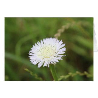 Flor de cesta tarjeta pequeña