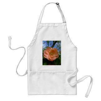 Flor de color salmón del Rubus Delantal