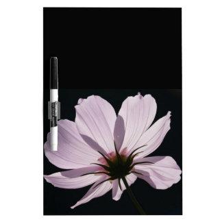 Flor de Cosmea de la lila Tablero Blanco