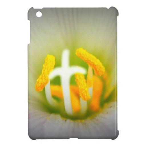Flor de Cristo iPad Mini Fundas