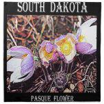 Flor de Dakota del Sur Pasque