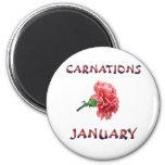 Flor de enero de los claveles imanes de nevera