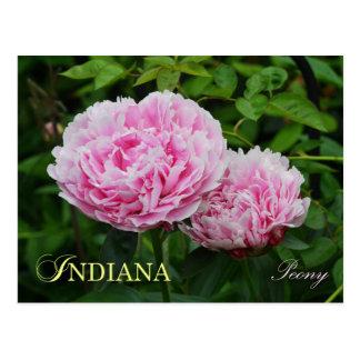 Flor de estado de Indiana: Peony Postal