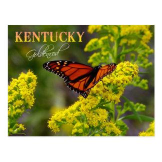 Flor de estado de Kentucky: Vara de oro Postal