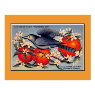 Flor de estado de la Florida del vintage, pájaro Postales