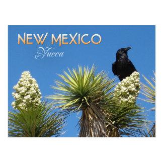 Flor de estado de New México: Flor de la yuca Tarjetas Postales