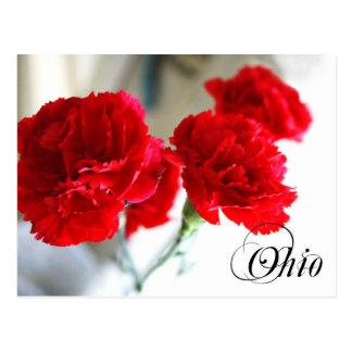 Flor de estado de Ohio: Clavel rojo Tarjeta Postal