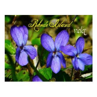 Flor de estado de Rhode Island: Violeta Postal