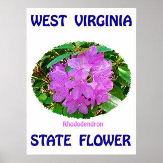 Flor de estado de Virginia Occidental, rododendro, Posters