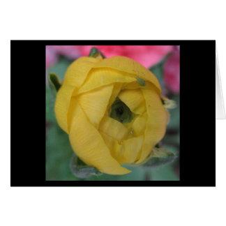 Flor de florecimiento amarilla tarjeta pequeña