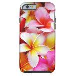 Flor de Hawaii del Frangipani del Plumeria