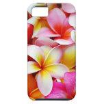 Flor de Hawaii del Frangipani del Plumeria iPhone 5 Case-Mate Cárcasa