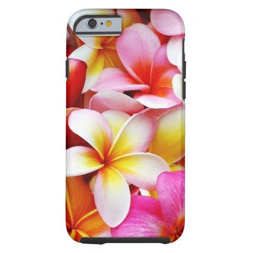 Flor de Hawaii del Frangipani del Plumeria Funda De iPhone 6 Tough