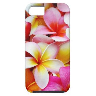 Flor de Hawaii del Frangipani del Plumeria Funda Para iPhone SE/5/5s