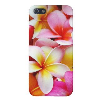 Flor de Hawaii del Frangipani del Plumeria iPhone 5 Funda