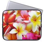 Flor de Hawaii del Frangipani del Plumeria modific Fundas Ordendadores