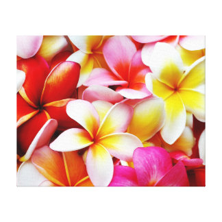 Flor de Hawaii del Frangipani del Plumeria modific Lona Estirada Galerias