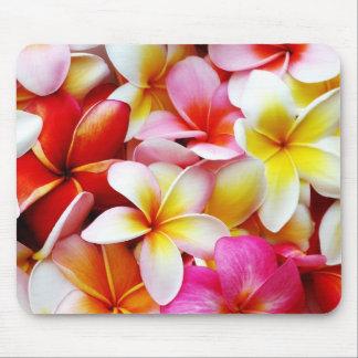 Flor de Hawaii del Frangipani del Plumeria modific Tapete De Raton