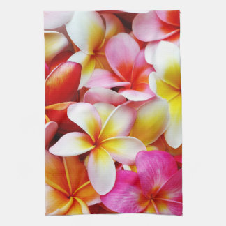 Flor de Hawaii del Frangipani del Plumeria modific Toallas De Cocina