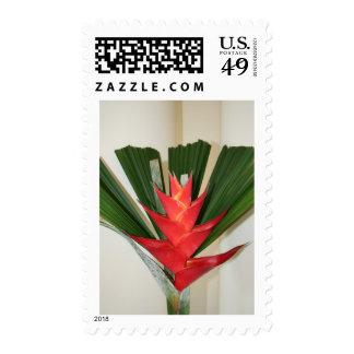 Flor de Heliconia de la pinza de langosta Sello