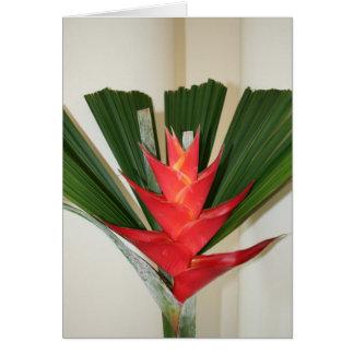 Flor de Heliconia de la pinza de langosta Felicitación