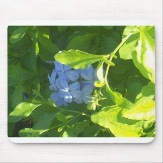Flor de Jamaica Alfombrillas De Ratones