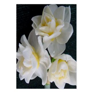 Flor de Jonquil - tarjeta de la zona del 3:1 de Tarjetas De Visita