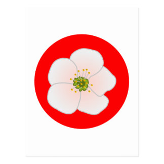 Flor de kirsch cherry blossom postales