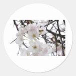 flor de la abeja pegatina redonda