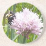 Flor de la abeja y de la cebolleta posavasos para bebidas