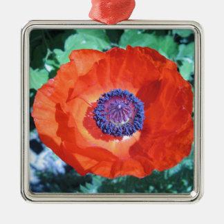 Flor de la amapola adorno navideño cuadrado de metal