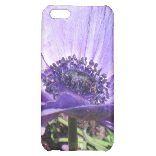 Flor de la amapola azul