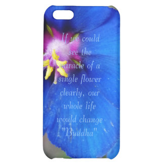 Flor de la amapola azul con la caja de la mota del
