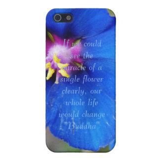 Flor de la amapola azul con la caja de la mota del iPhone 5 fundas