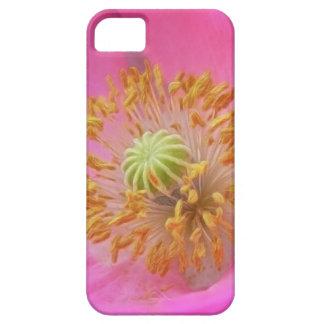 Flor de la amapola de las rosas fuertes iPhone 5 cárcasa
