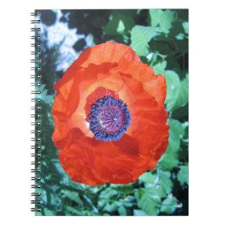 Flor de la amapola libro de apuntes con espiral
