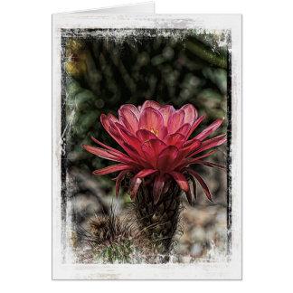 Flor de la antorcha del cactus del desierto felicitación