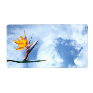 Flor de la ave del paraíso etiqueta de envío