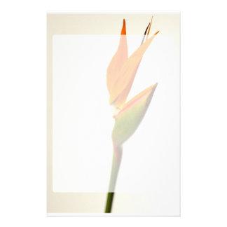 Flor de la ave del paraíso papeleria de diseño