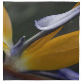 Flor de la ave del paraíso servilletas