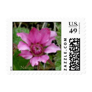 Flor de la baya de Nangoon (Rubus arcticus) Timbre Postal