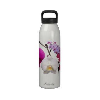 flor de la botella de agua de la orquídea