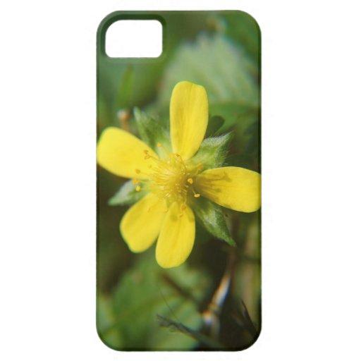 Flor de la caída iPhone 5 funda