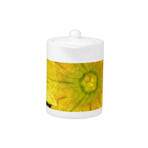 Flor de la calabaza