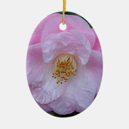 Flor de la camelia en la floración adorno ovalado de cerámica