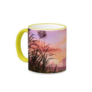 Flor de la caña de azúcar en la puesta del sol tazas