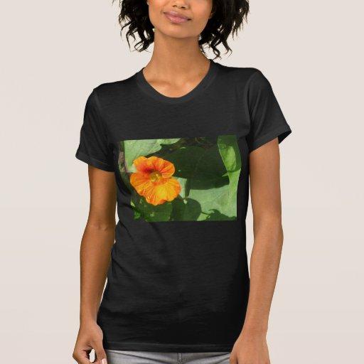 Flor de la capuchina camisetas