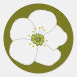 Flor de la cereza pegatinas redondas
