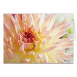 Flor de la dalia tarjeta de felicitación