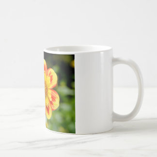 Flor de la dalia taza clásica